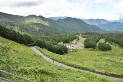 スキー場の広々とした風景の中を駆け抜ける