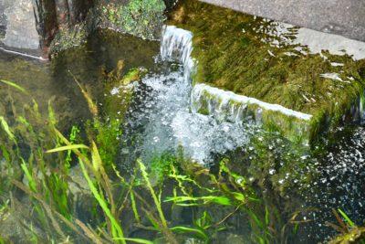 生地の湧き水